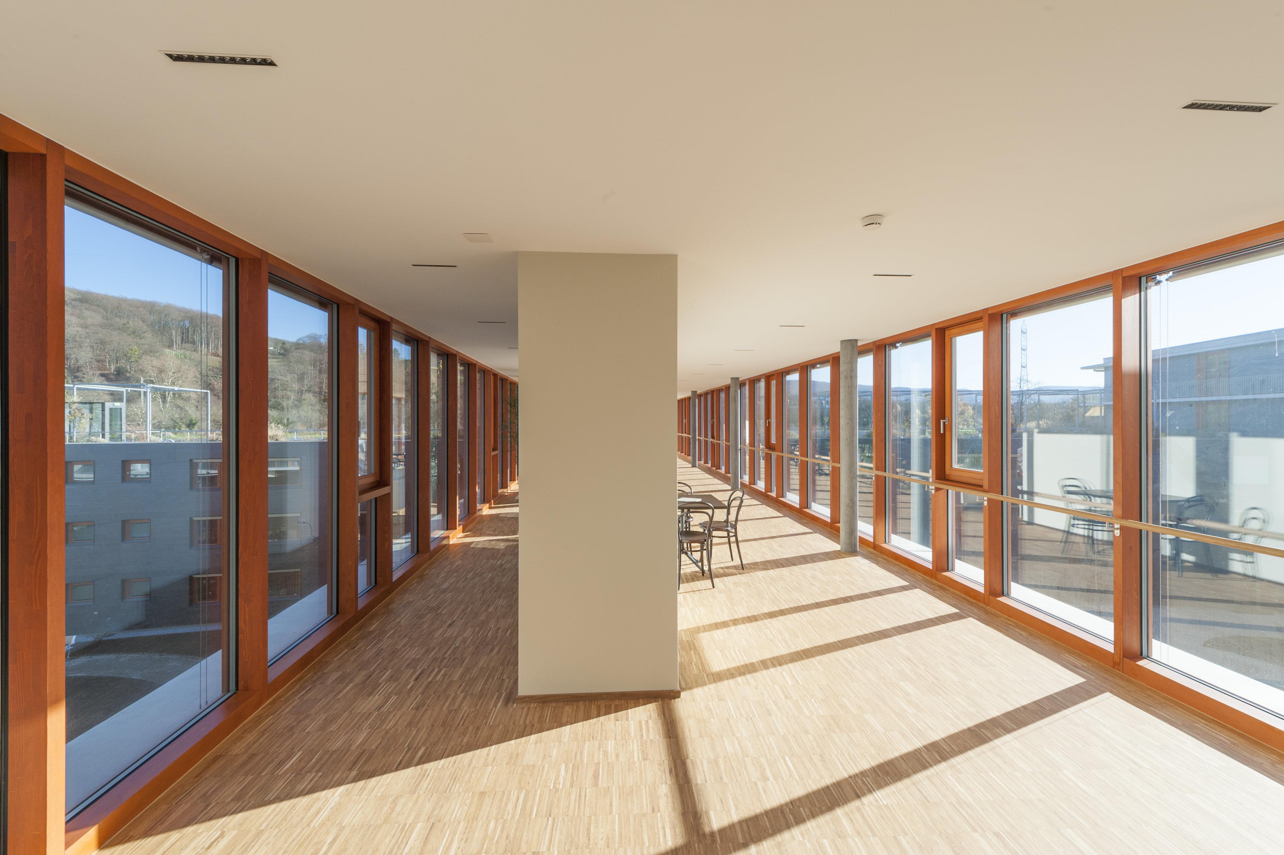 Lichtdurchflutete Fensterfront mit Naturholzfenster im Pfosten-Riegelelement