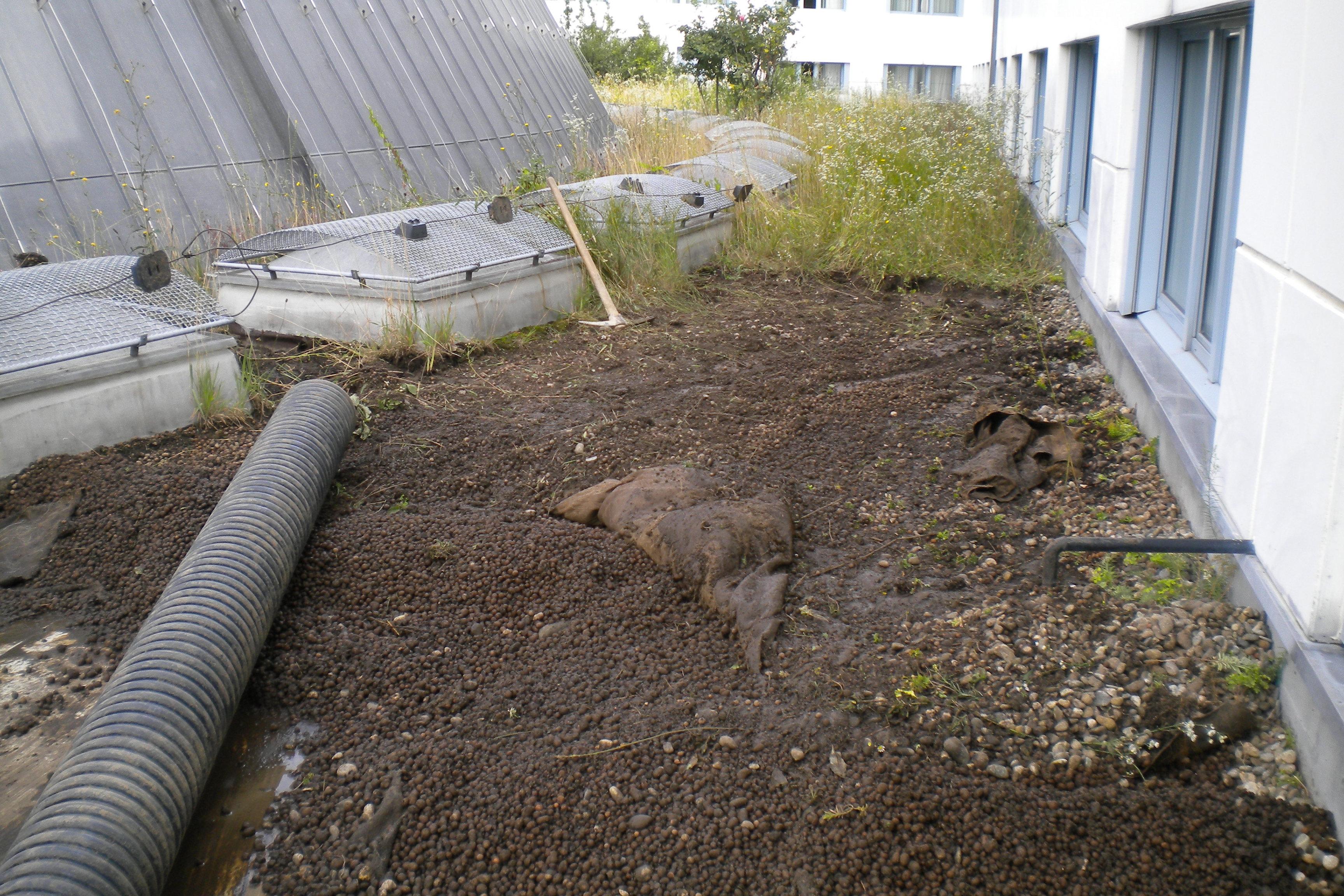 Saugbagger-Arbeiten auf dem Dach