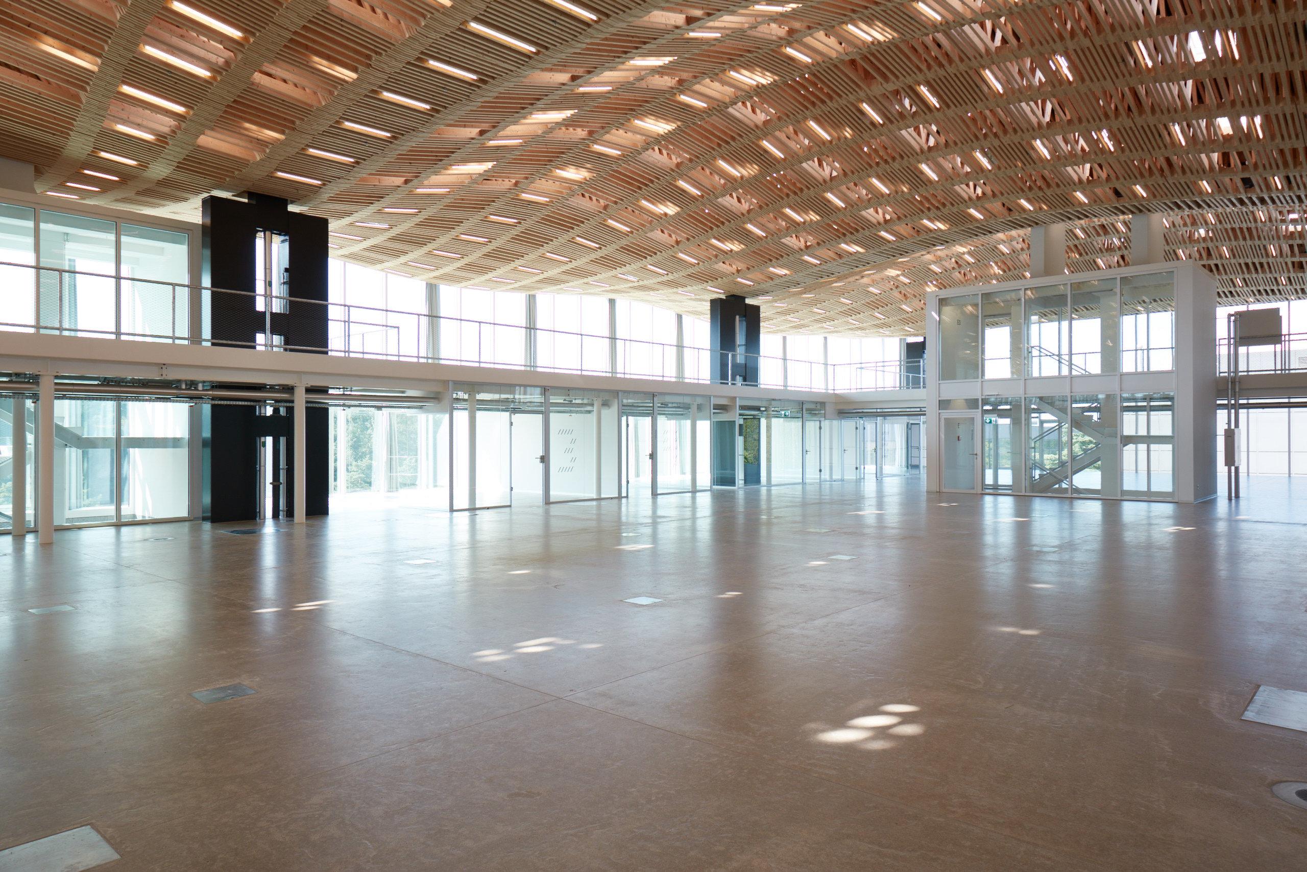 Halle Fensterfassade + gewölbtes Holzdach aus Fachwerkträgern innen